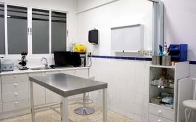 clinica-veterinaria-maria-auxiliadora-2
